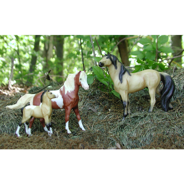 Well According To The Breyer Set I Have Of Spirit Rain And Their FOAL Say They A Foal 3